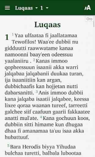 Oro Amharic Bible 3