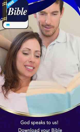 Modern English Version Bible 3
