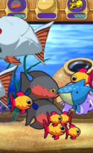 Fish Aquarium 1