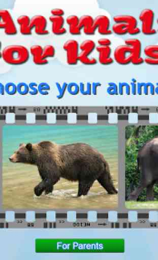 Animals for Kids - Flashcards 1