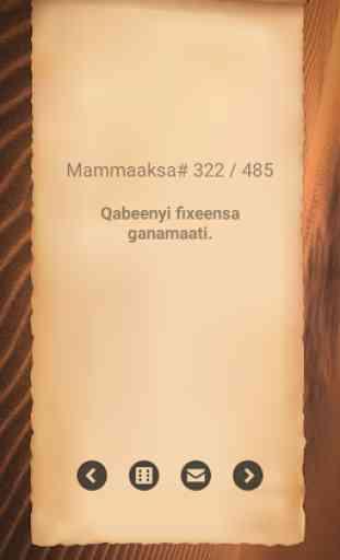 Mammaaksa Oromoo - Oromo Proverb 3