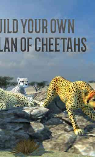 Clan of Cheetahs 3