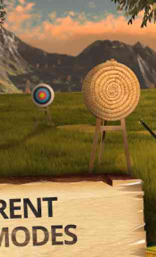 Archery Champion: Bow Sport 3D 2