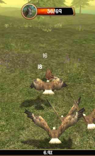 Wild Eagle Sim 3D 2