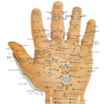 Best Acupressure points full body app in hindi apps for Android